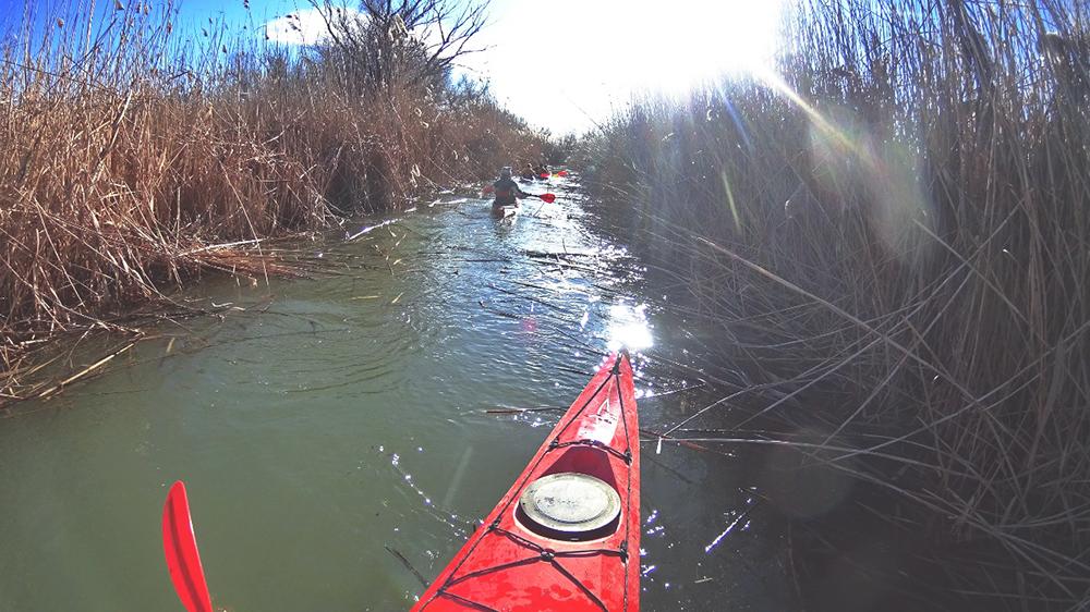 kayak-po-dunay-5 Активный выходной в Измаиле - в путь на каяках (фото)