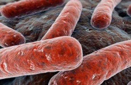 Бессарабия все еще лидер по заболеванию туберкулезом