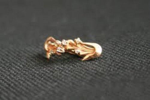 1392397277_zagruzhennoe Измаильчанин украл из куртки золотые сережки