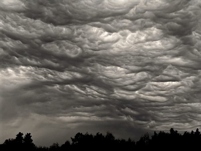 77598994_dozhd Погода на сегодня: облачно, но без осадков