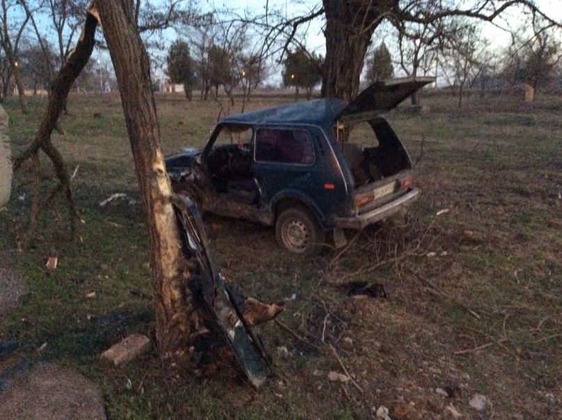 ДТП в Измаиле: ВАЗ въехал в дерево, двое пострадало (фото)