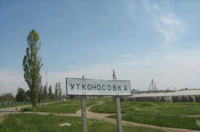 В Утконосовке появится свой туевый парк