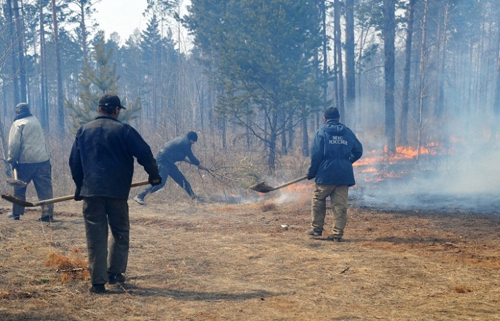 Пожар в Забайкалье, пострадало более 21,5 тыс. человек ( фото, видео)