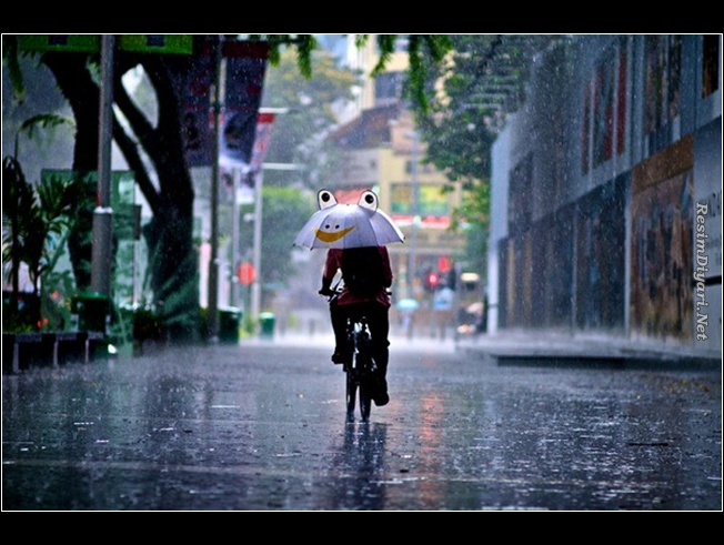 Погода на сегодня: Облачно и дождь весь день