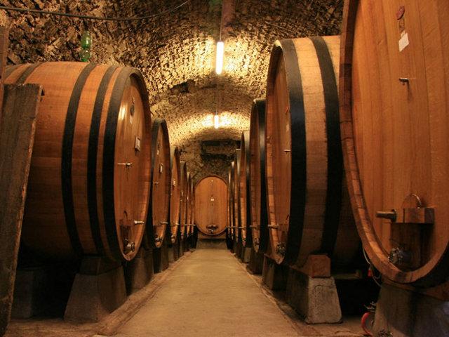 виноделие Какие перспективы у винодельческого производства Бессарабии?