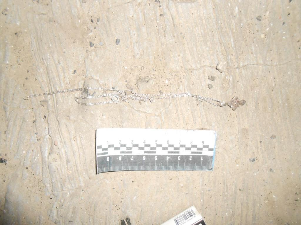 """DSCN4804-1024x768 Измаильский подросток промышлял """"вооруженными"""" разбоями"""