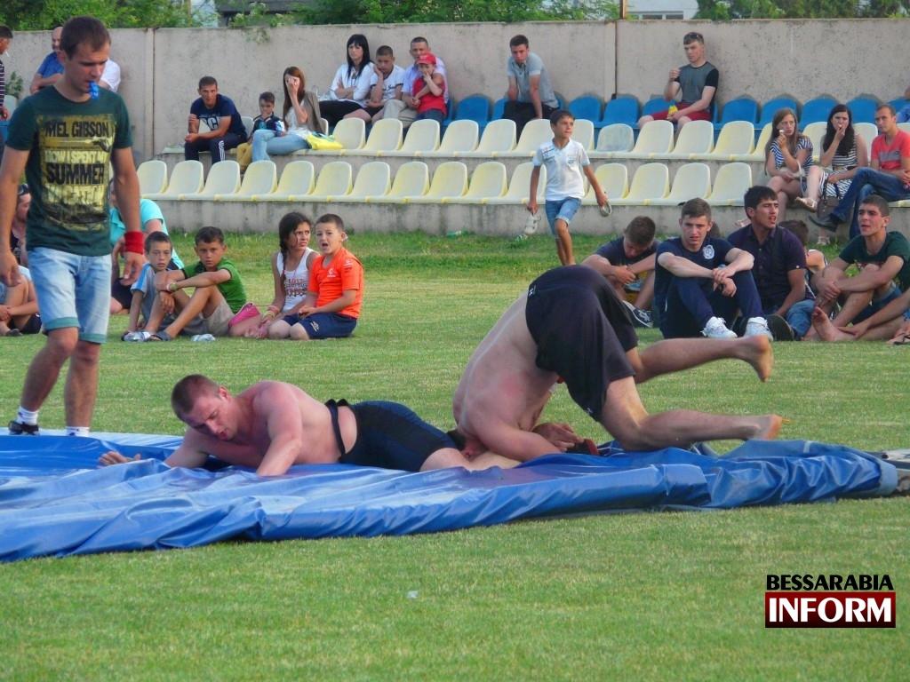 P1050515-1024x768 В Богатом прошел праздник спорта и культуры (фото)