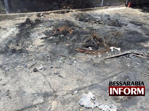 В Измаиле ночью массово горели автомобили (фото)
