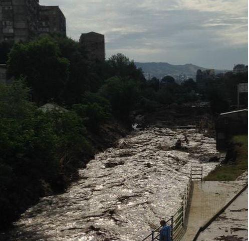 navodnenie-v-tbilisi-foto-quanza_bot_rect_b978fd6c3b6332ae7c3c405fbabfeb47 Наводнение в Тбилиси: по улицам плавают крокодилы и ходят носороги (фото)