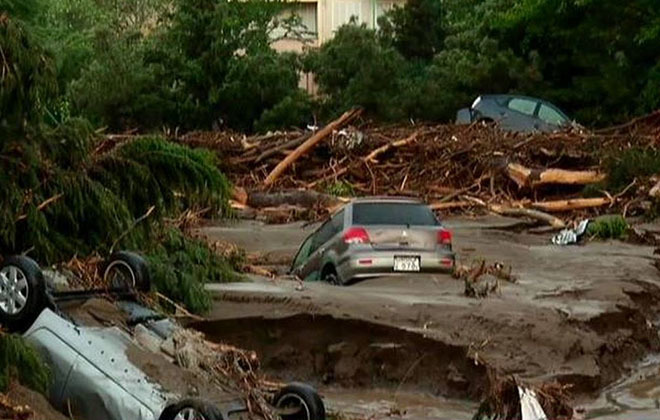 navodnenie-v-tbilisi-foto-quanza_bot_rect_e977a18b2d51b61437cbb0140f6784f5 Наводнение в Тбилиси: по улицам плавают крокодилы и ходят носороги (фото)