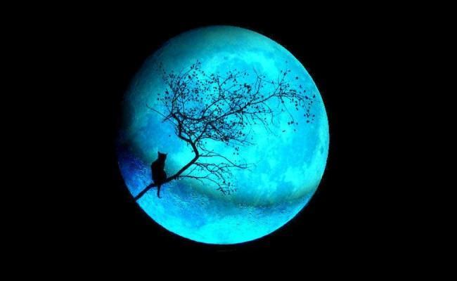 """В пятницу весь мир сможет наблюдать """"голубую Луну"""""""