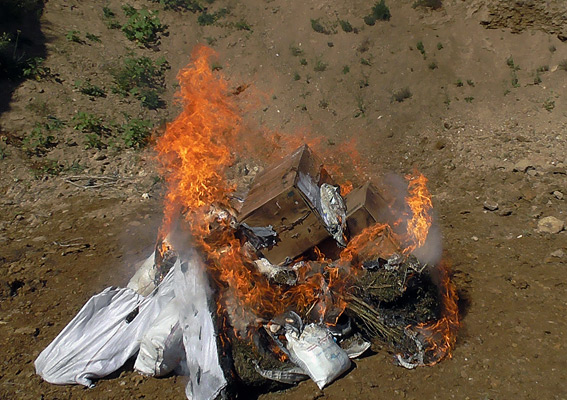 Аккерманские правоохранители уничтожили большую партию наркотиков(фото)