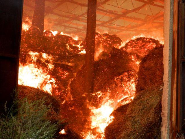 666666666666655555555 В Тарутинском р-не пожар уничтожил 8 тонн сена
