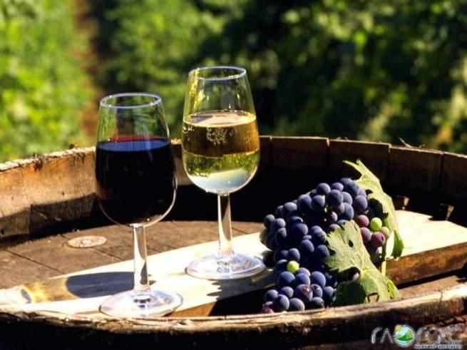 Саакашвили в курсе проблем производителей вина в Бессарабии
