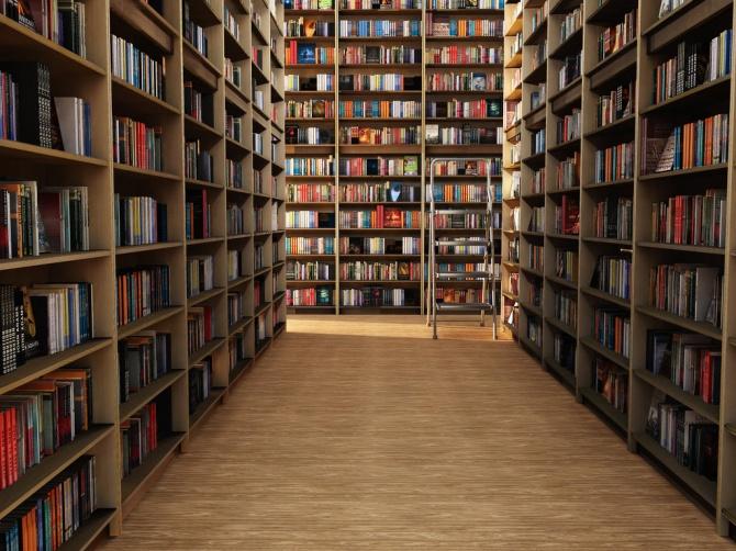 9ff624ab6dede91b0568f6985de84e65 В Измаиле правоохранители успокаивали дебошира в библиотеке