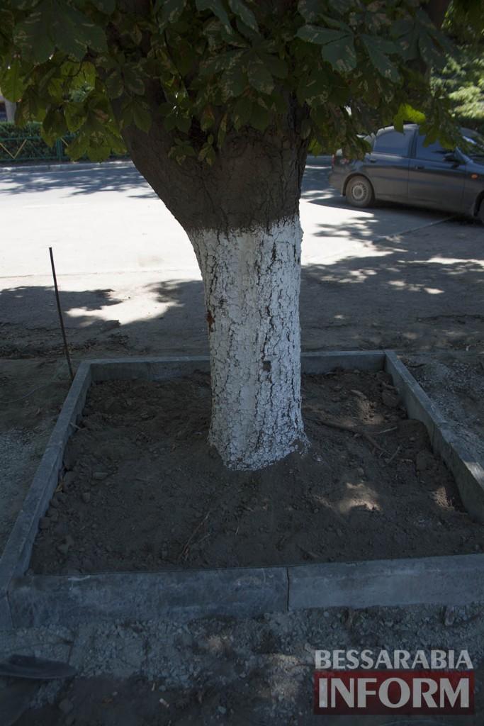 IMG_0243-683x1024 В Измаиле возле детской поликлиники расширят парковку