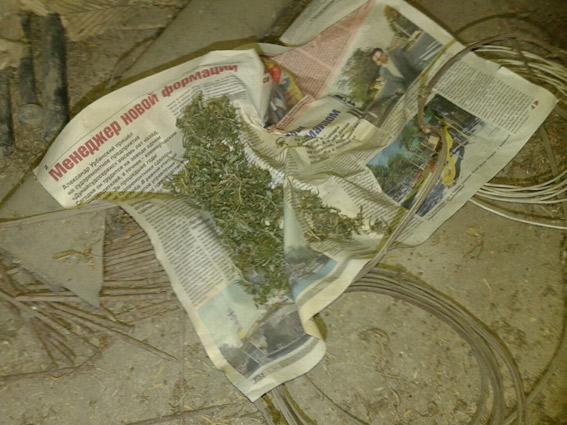 мак-3 У измаильчанина изъяли наркотики и оружие (фото)