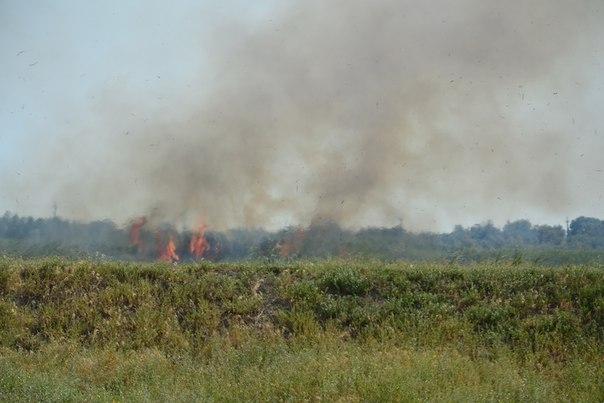 OvGKJOdXllo Пожар в Белгород-Днестровском р-не: горят плавни