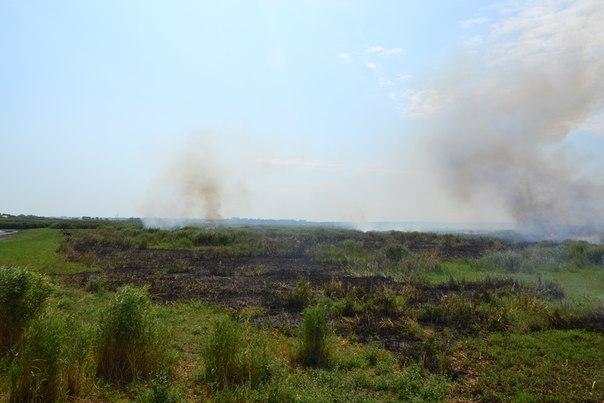 qma9WEzhCVs Пожар в Белгород-Днестровском р-не: горят плавни
