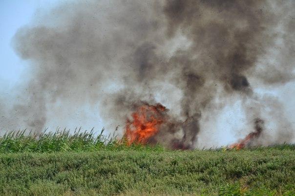 rvUvrNmrCVo Пожар в Белгород-Днестровском р-не: горят плавни