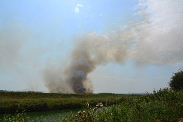 ujQNuQ6bfjY Пожар в Белгород-Днестровском р-не: горят плавни