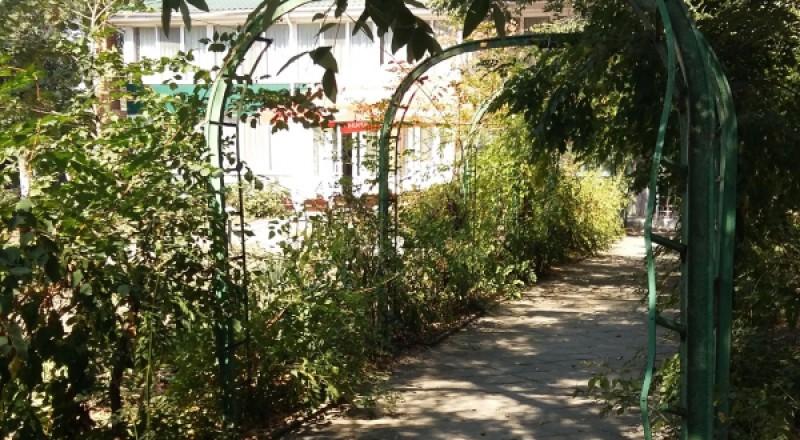 парк-1-800x440 В Аккермане займутся реконструкцией самого древнего парка
