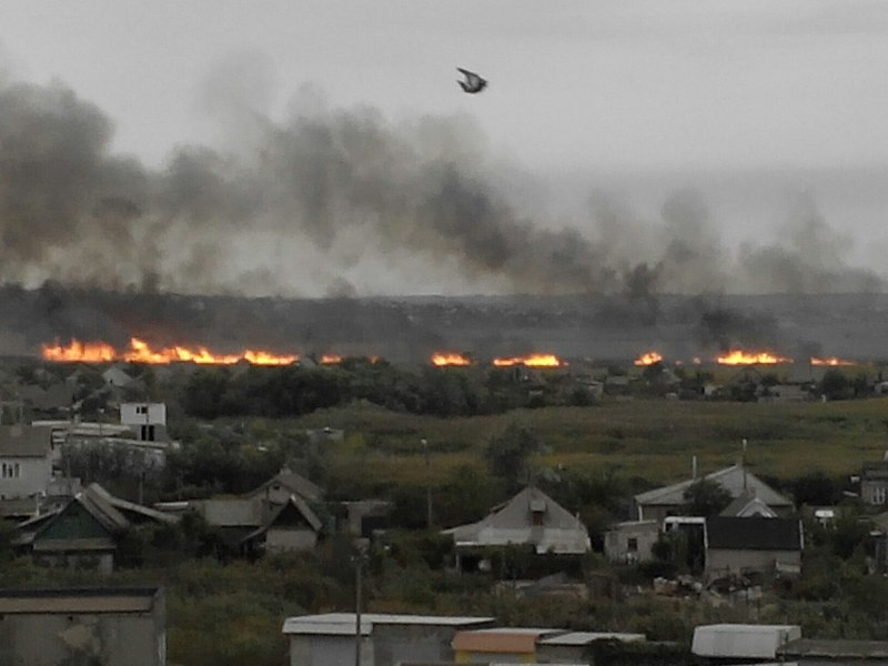 5RU63WPHzkA В Белгород-Днестровском р-не снова горели плавни (фото)