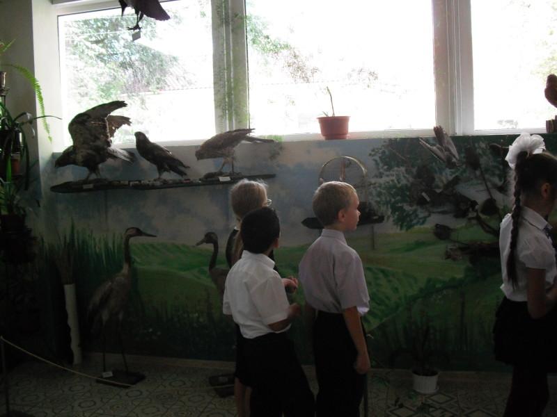 DSCF0087-800x600 По следам времени: Измаильскому музею Придунавья - 25 (фото)