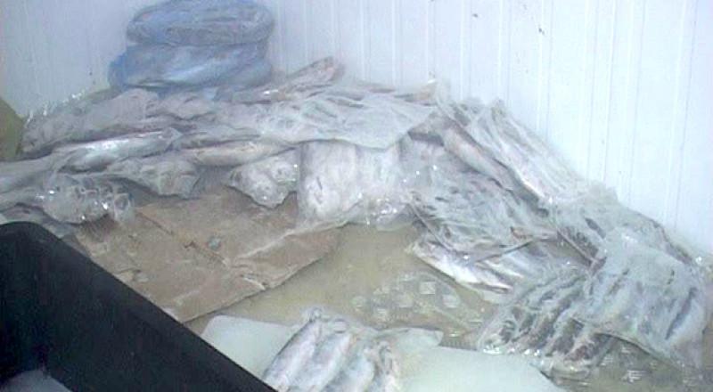 PM36image003-800x440 В Бессарабии остановлена преступная деятельность предприятия
