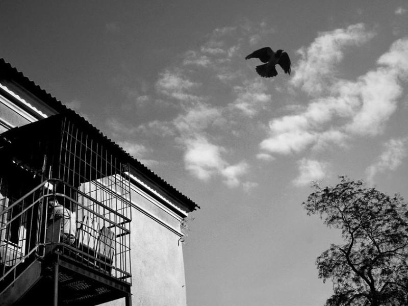 f22-800x600 Измаильский фотограф всколыхнул мировую общественность своми работами о психиатрической больнице