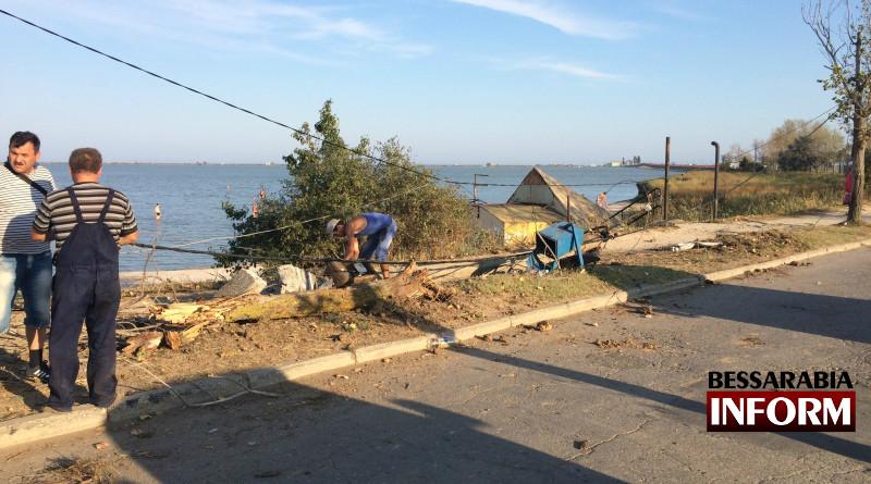 В Сергеевке пьяный водитель на BMW снес столб и дерево (фото)