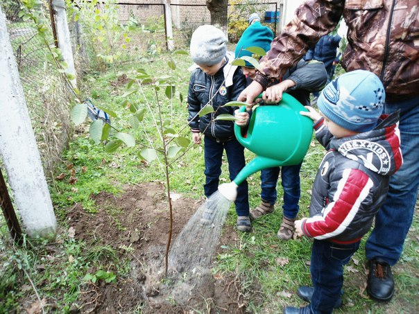3hZGroEN2EE В Измаиле малышей приучали к труду и любви к природе