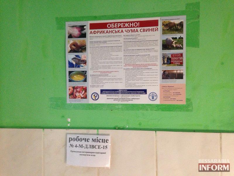 Prp6QalY8aQ Измаил: африканская чума свиней под контролем