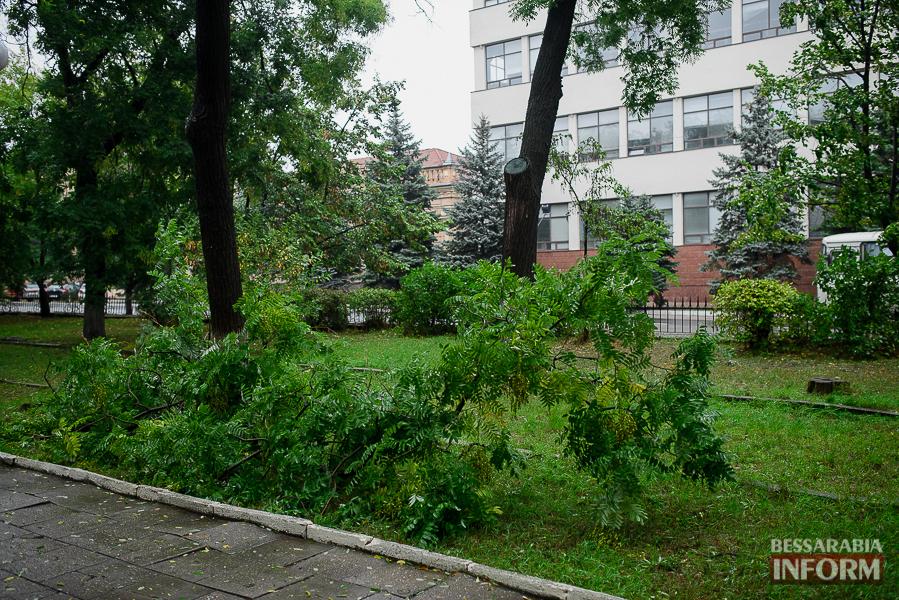 В Измаиле непогода оставила свои следы (фото)