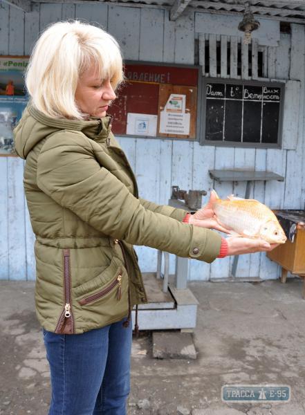 В Измаиле поймали золотую рыбку (фото)