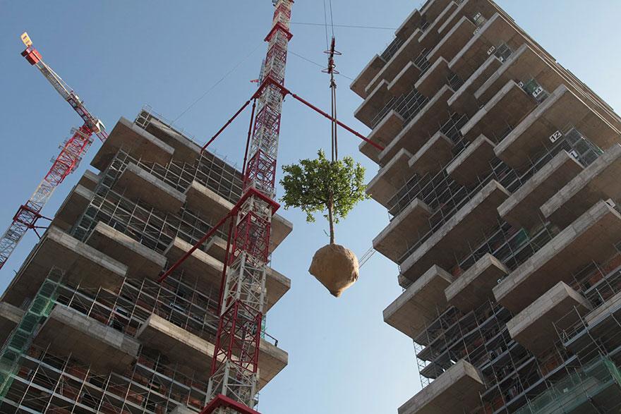Небоскрёб, многоквартирный дом и вертикальный вечнозелёный лес в одном флаконе