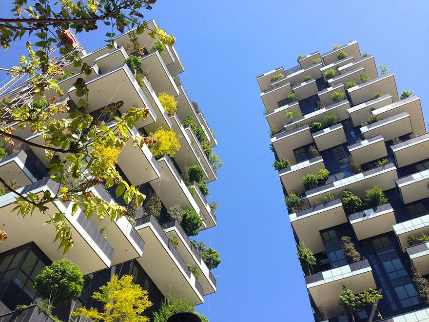 apartment-building-tower-trees-tour-des-cedres-stefano-boeri-24 Небоскрёб, многоквартирный дом и вертикальный вечнозелёный лес в одном флаконе