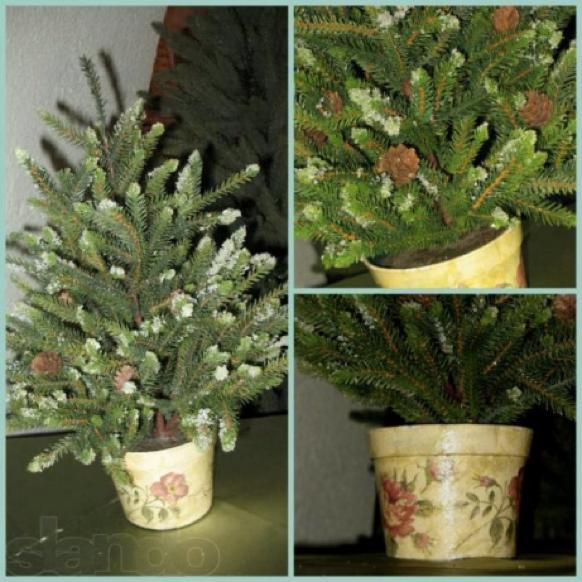 4odessa Сколько стоит новогодняя елка в Одесской области