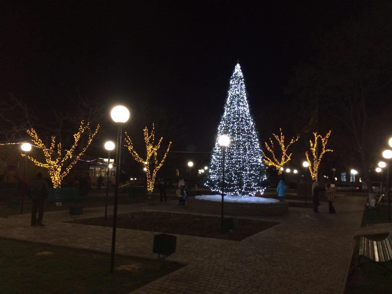54674 Выбираем лучшую новогоднюю елку Бессарабии (голосование от БИ)