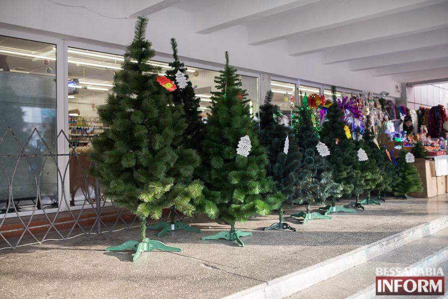 Новый год уже близко - в Измаиле заработали первые ёлочные базары (ФОТО)