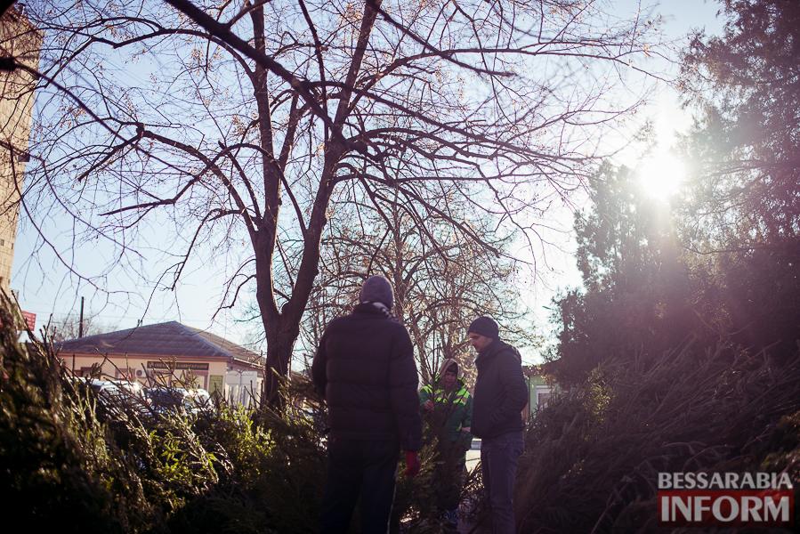 SME_6994 Предновогодняя лихорадка в Измаиле (фоторепортаж)