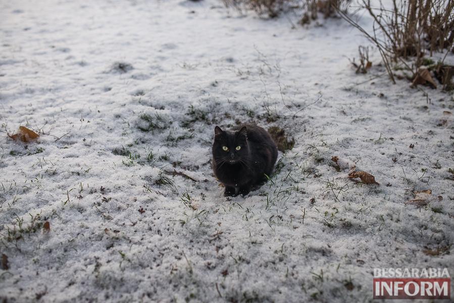 SME_7073 В Измаил пришла настоящая зима (фоторепортаж)