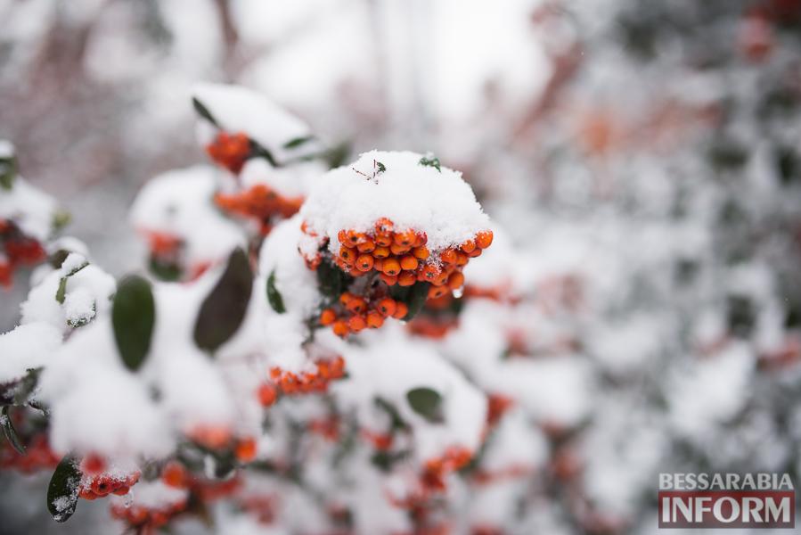 SME_7285 Зима в Измаиле. День второй (фоторепортаж)