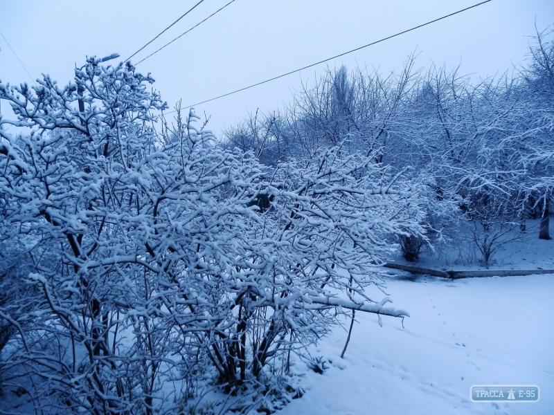 Север Одесской области замело снегом (фото)
