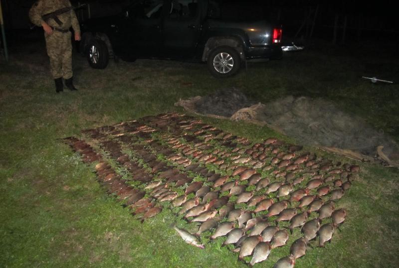 IMG_1085 Ренийский р-н: пограничники задержали очередного браконьера с уловом на 40 тыс. гривен