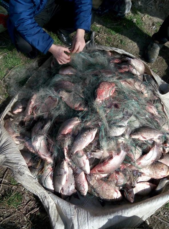 P60223-125003 Полиция совместно с пограничниками задержали браконьеров на озере Кугурлуй