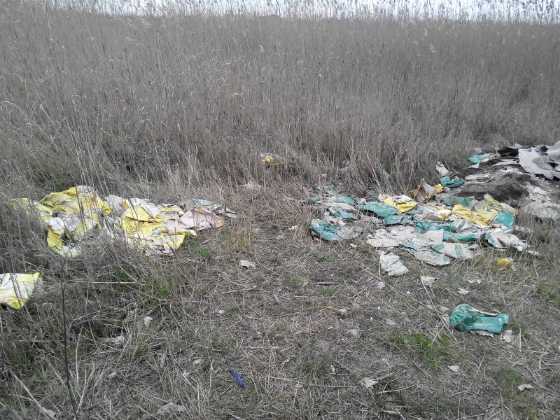 Ush6yyBnsE4 Измаильчане обнаружили в плавнях Лебяжьего озера килограммы отравы (фото)