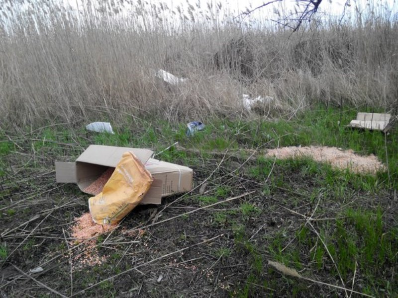 lSZGlMK62pY Измаильчане обнаружили в плавнях Лебяжьего озера килограммы отравы (фото)