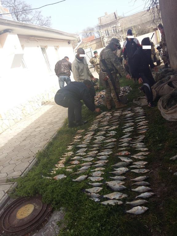 На озере Кугурлуй поймали браконьеров с крупным уловом (фото)