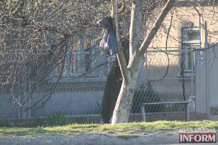 В 2018 году жителей Измаила, где пакеты с мусором развешивают на деревьях, обяжут сортировать отходы